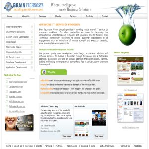 Brain Technosys - Outsource Website Design