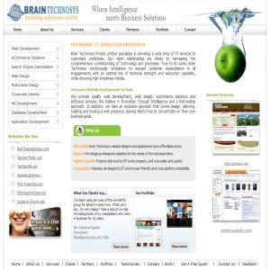 Brain Technosys - Outsource Website Design