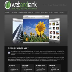 Search engine placement service at webandrank.com
