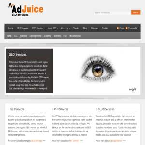 AdJuice SEO Services