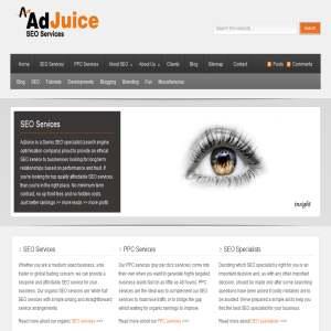 AdJuice SEO Services